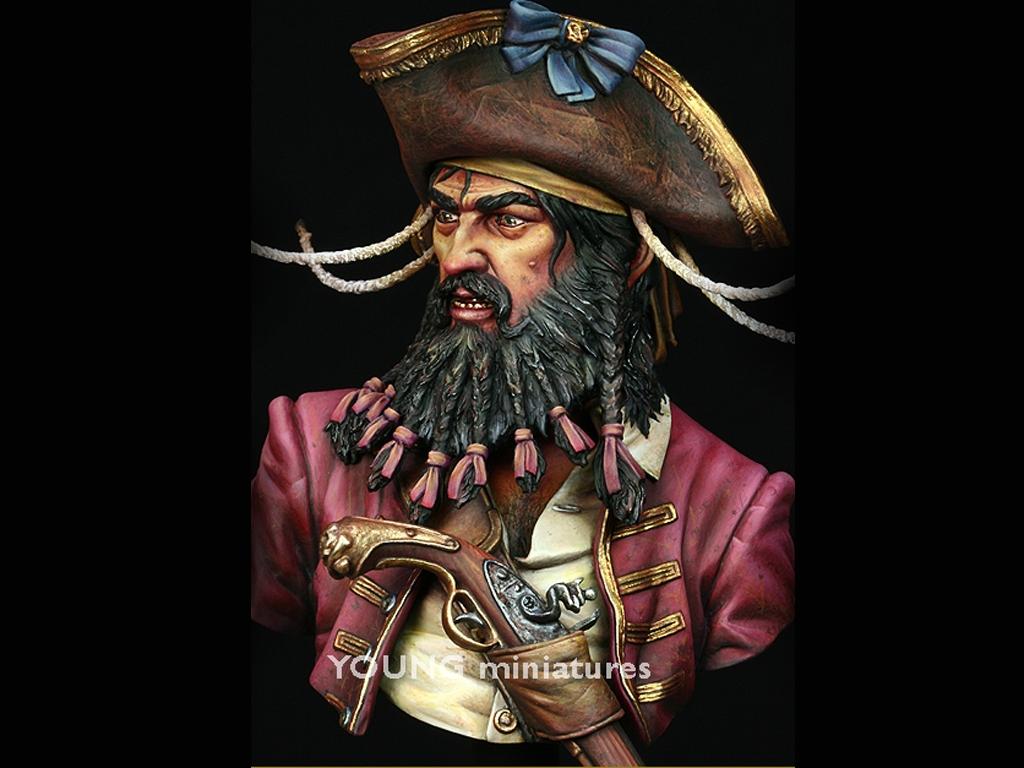 Black Beard 1718 - Queen Anne's Revenge  (Vista 8)