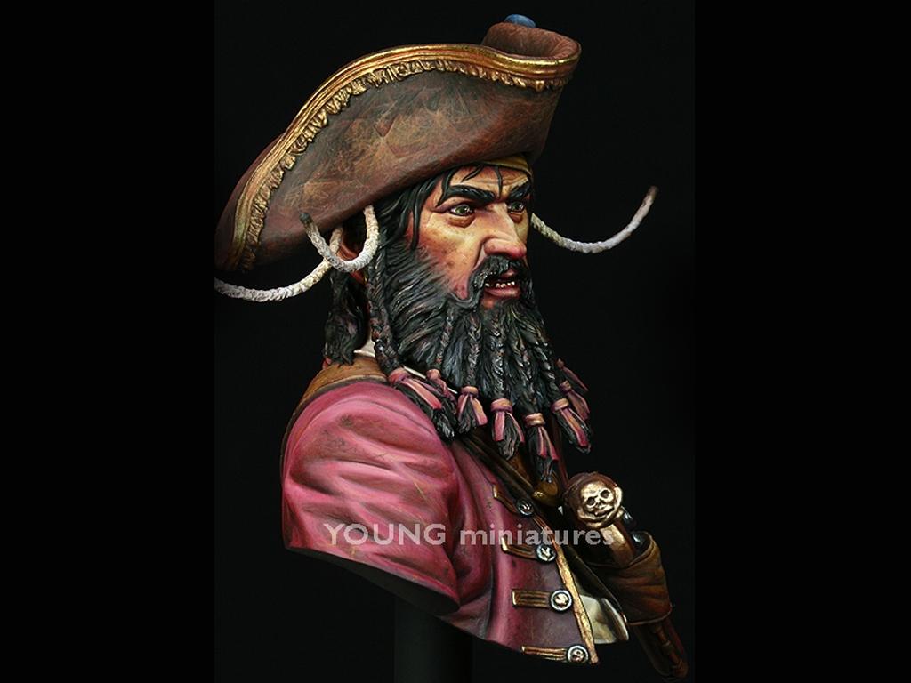 Black Beard 1718 - Queen Anne's Revenge  (Vista 9)