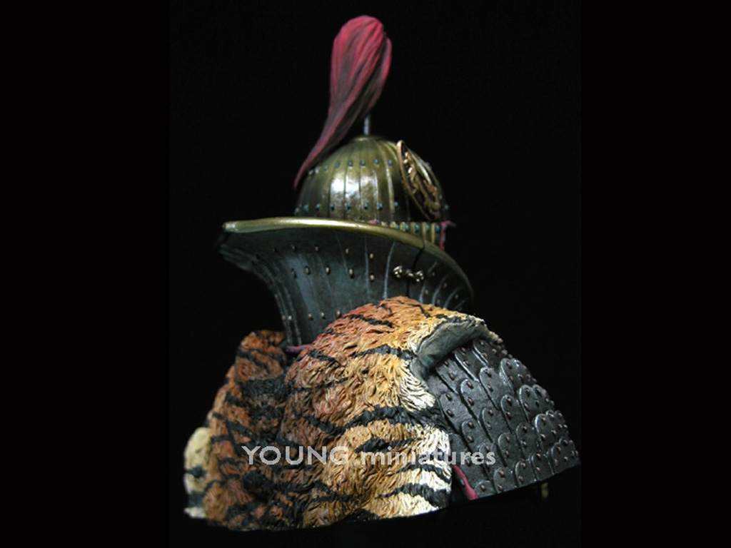 Goguryeo Heavy Cavalry Officer  (Vista 8)