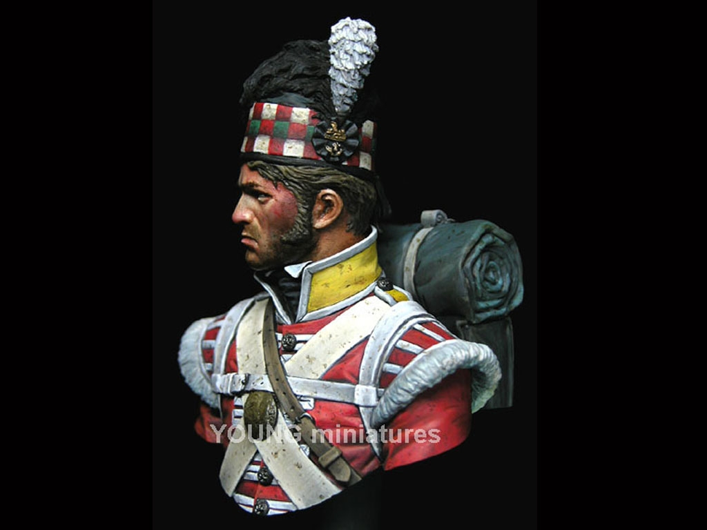 The 92nd Gordon Highlanders - Waterloo 1  (Vista 6)