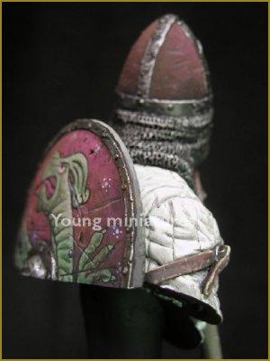 Norman Knight Hastings 1066  (Vista 5)