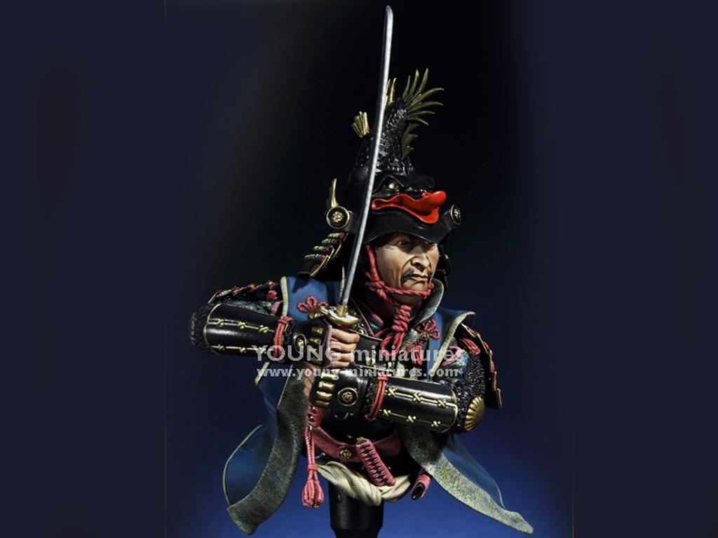Daimyo Warlord 1650  (Vista 1)