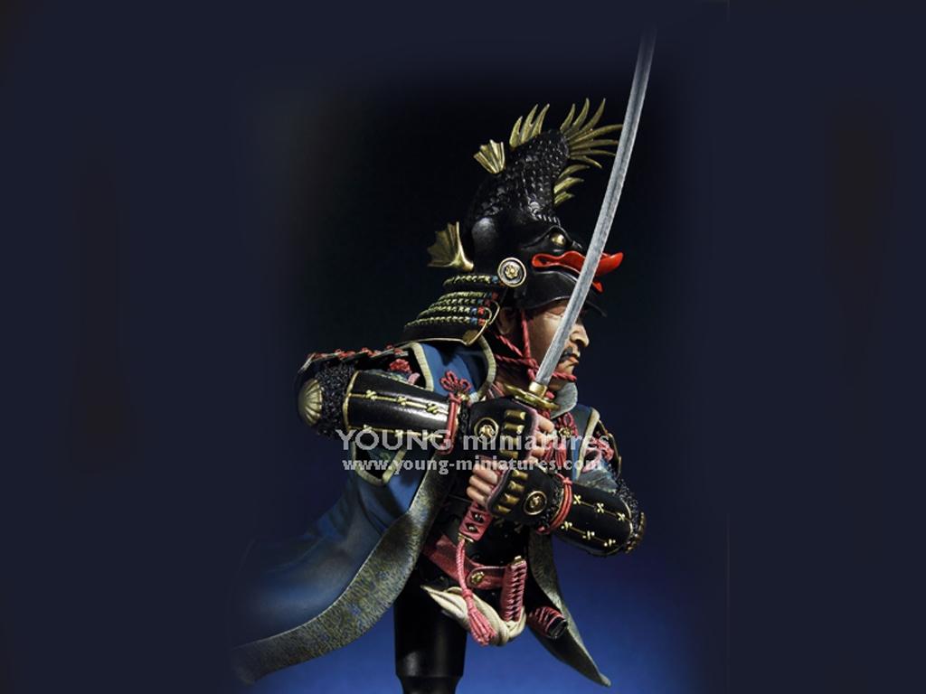 Daimyo Warlord 1650  (Vista 2)