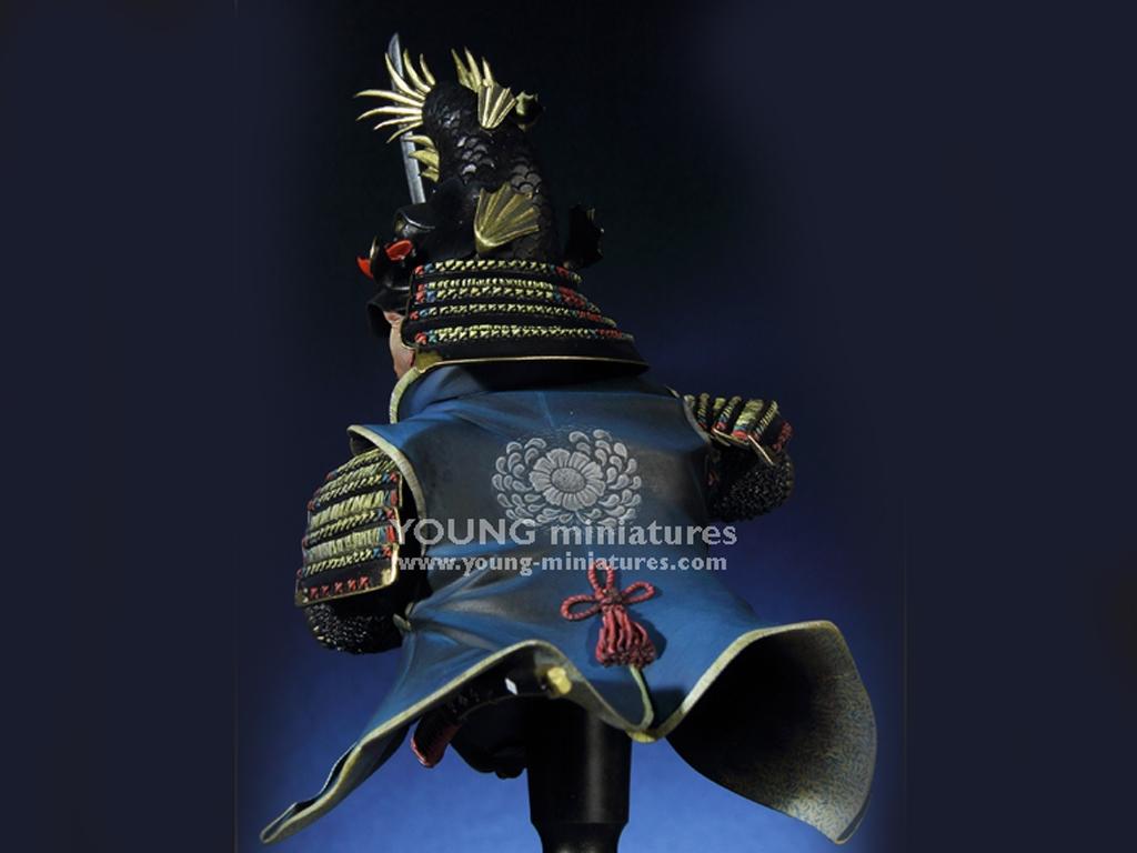 Daimyo Warlord 1650  (Vista 3)