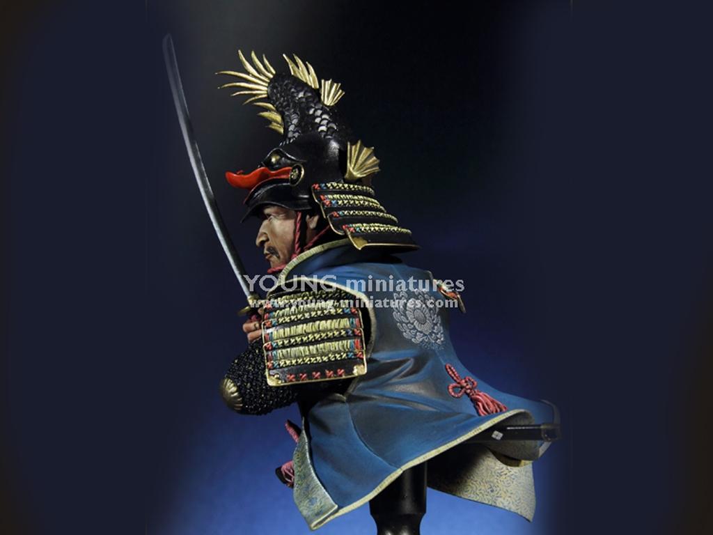 Daimyo Warlord 1650  (Vista 4)