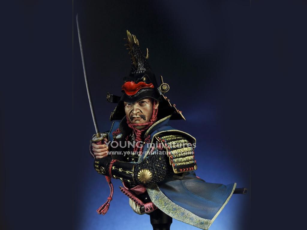 Daimyo Warlord 1650  (Vista 5)