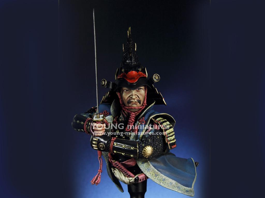Daimyo Warlord 1650  (Vista 6)