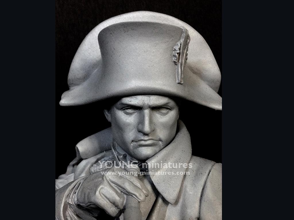 Napoleon en Austerliz  (Vista 10)