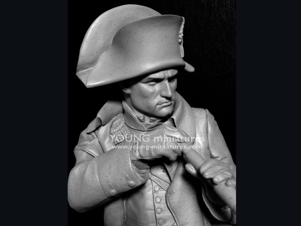 Napoleon en Austerliz  (Vista 9)