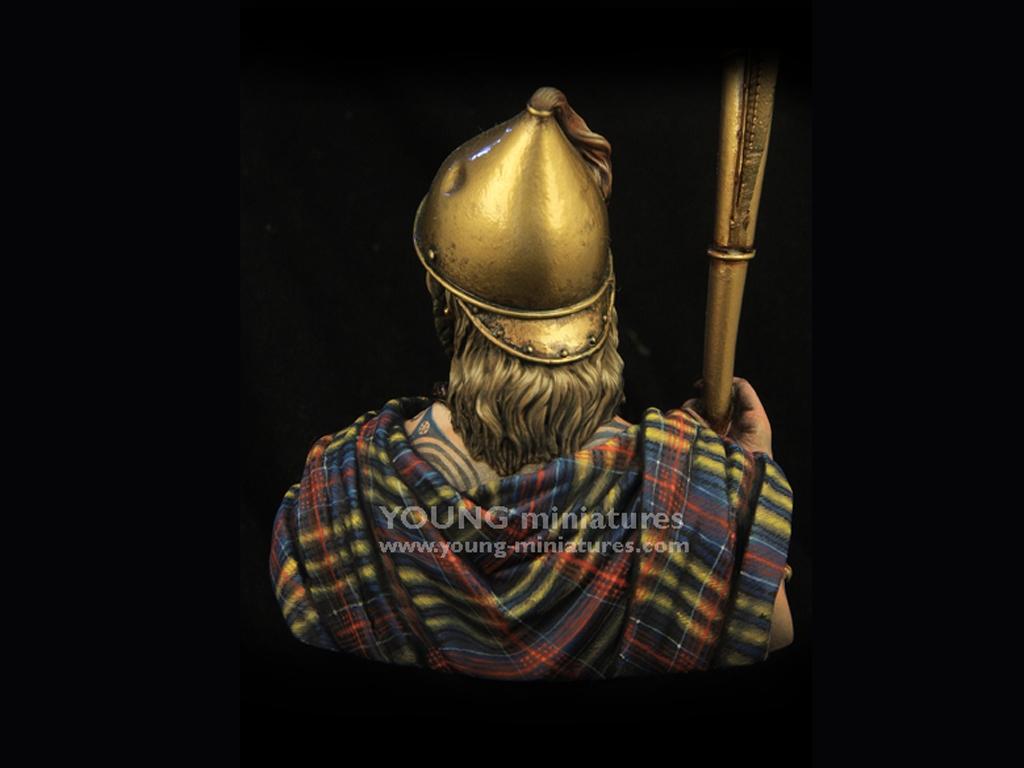 Celtic Cornicer  (Vista 7)