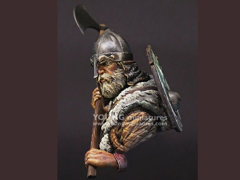 Viking Warrior  (Vista 7)
