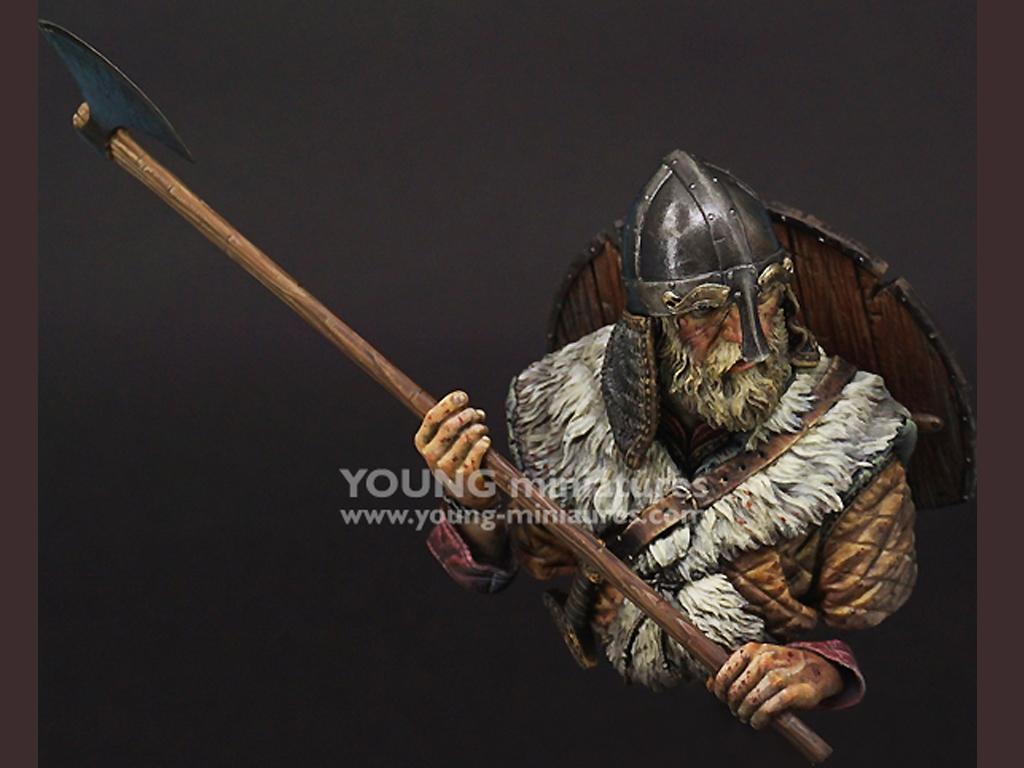 Viking Warrior  (Vista 8)