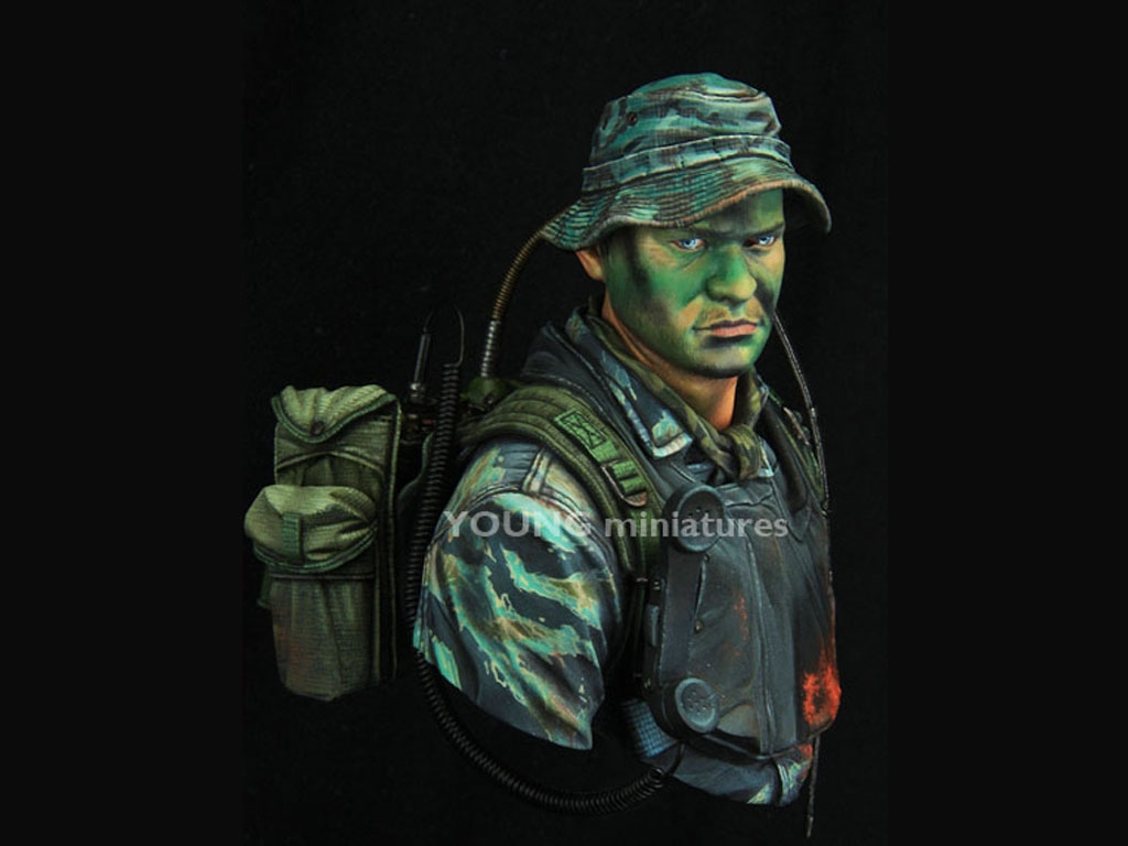 US Navy Seal Vietnam  (Vista 2)