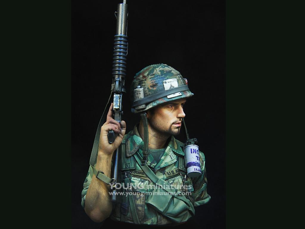 US 1st Cavalry Div Vietnam 1970   (Vista 8)