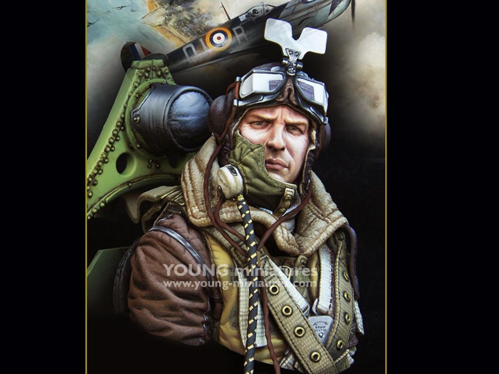 RAF Spitfire Mk.l Pilot WWll  (Vista 1)