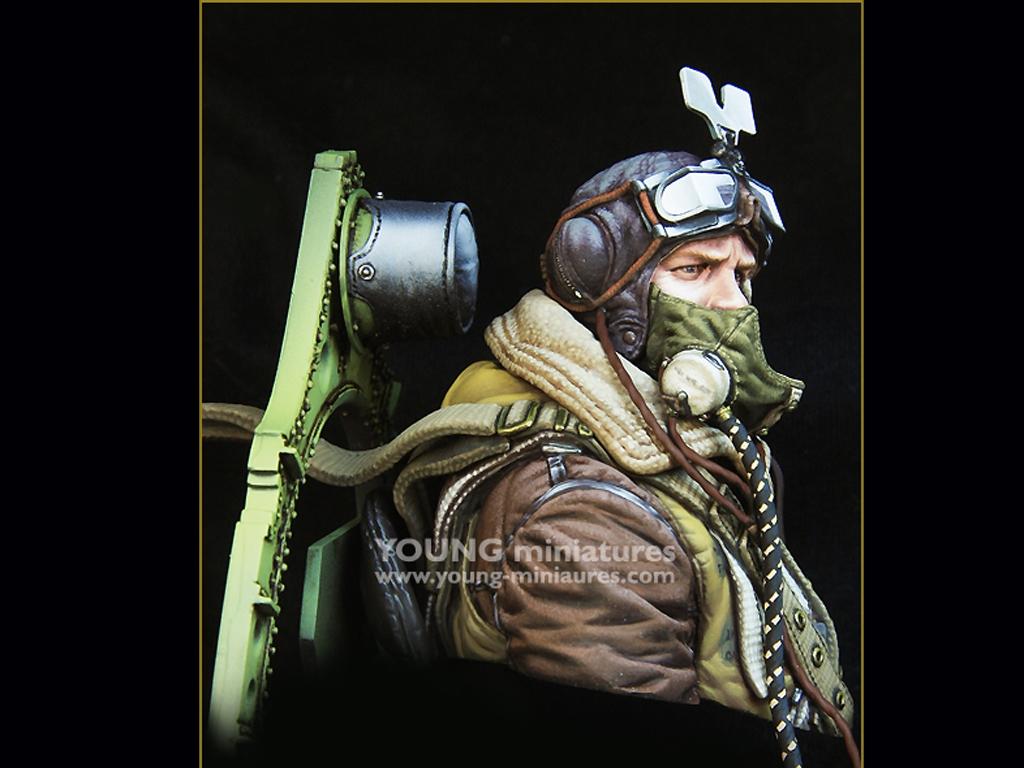 RAF Spitfire Mk.l Pilot WWll  (Vista 8)